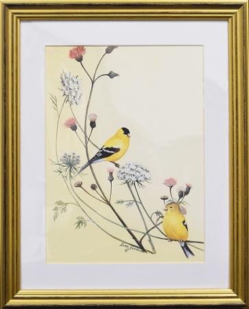 Audubon Finch Bird Nature Print Matted 11x14 Wall Decor Wildlife ...