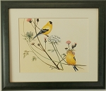 44c3abd2373 Audubon Finch Bird Nature Print Matted 11x14 Wall Decor Wildlife ...