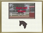 Animal Brown Horse Photo Frame 8x10 with 4x6 Photo