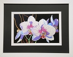 Botanical Floral Art White and Pink Orchid Flower Wall Decor Print 11.25x14 White Frame