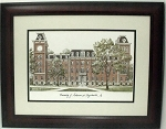 University of Arkansas Collegiate Framed Print