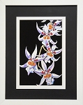 Bontanical Floral White Orchid Flower Wall Decor Print 11.25x14 White Frame
