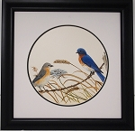 Audubon Bluebird Bird Print 11 x 11 Wildlife Nature Wall Decor